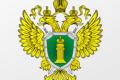 Николай Саврун: Власти неэффективно исполняют контрольные полномочия