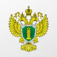 Прокуратура опять потребовала переделать капремонт дома и двора в Белгороде