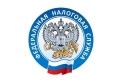 Белгородцы задолжали государству 7,4 млрд рублей