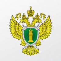 Белгородская прокуратура проверяет информацию о подарочных картах сотрудникам корпорации «ГРИНН»