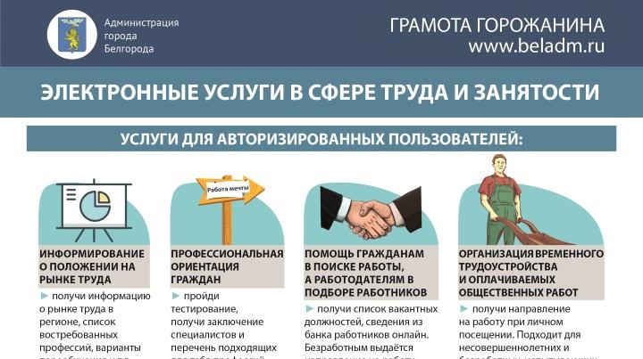 Опубликована инфографика об электронных услугах в сфере труда и занятостиботников, организация временного трудоустройства и оплачиваемых общественных работ.