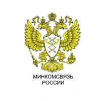 Минкомсвязь не поддержала наказание за оскорбление властей в Интернете