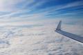 Вылетевший из Москвы в Белгород самолёт вернули в столицу