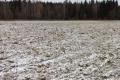 Под Белгородом продают землю под торговый центр за 75 млн рублей