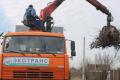 Белгородцам не придётся платить отдельно за вывоз растительных отходов